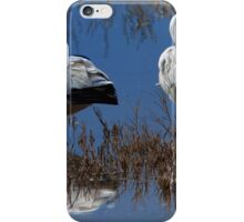 Ross's Geese iPhone Case/Skin