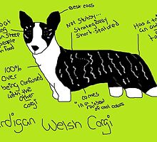 Cardigan Welsh Corgi by nottostandard