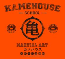 Kame house by Ironic