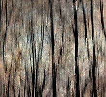 Abstract Photography - Winter Trees by KMRyan