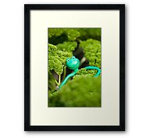Kermit's day out Framed Print