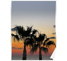 Sunset with palms... Poster
