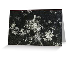 Congregating Flakes. Greeting Card