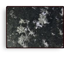 Snow Flakes by Design. Canvas Print