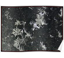 Snow Flakes by Design. Poster