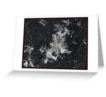 Snow Flake Kiss Greeting Card