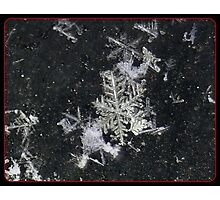 Snow Flake Kiss Photographic Print