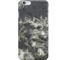 Congregating Flakes. iPhone Case/Skin