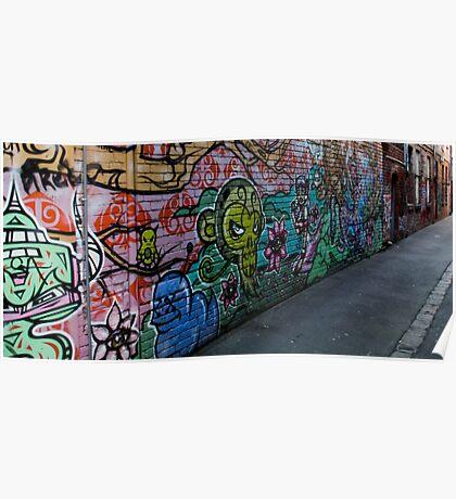 Lane of graffiti Poster
