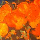 Wild Poppies (oil on canvas 23 X 30 cm) by Margaret Morgan (Watkins)