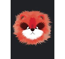 Legendary Red Panda Photographic Print