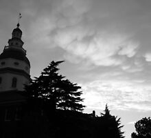 Annapolis, Maryland State House by axb500