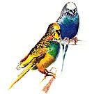 Love Birds by Anil Nene