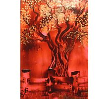 red and gold Photographic Print