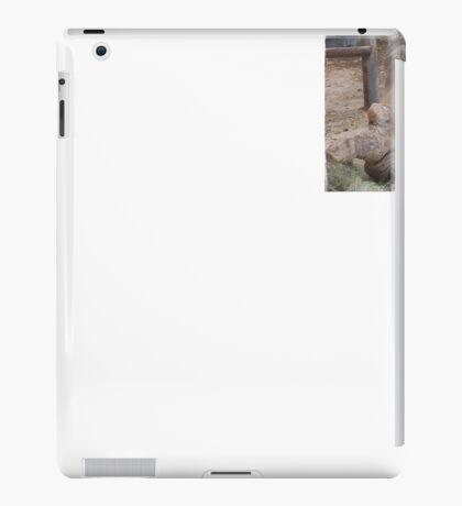 magestic rhino from az iPad Case/Skin