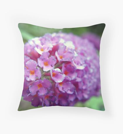 Butterfly Blossom Macro Throw Pillow