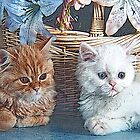 Stylized photo of two kittens and a decorative basket. by NaturaLight