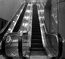 3 AM AT THE AIRPORT ESCALATOR  by Reese Forbes