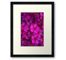 Pink All Over Framed Print
