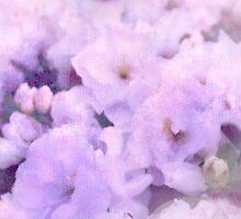 Fleur III by Damienne Bingham