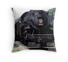 030907-54 Throw Pillow