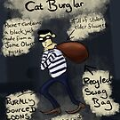 Middle Class Cat Burglar by Ed Clews