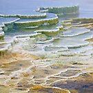 Hot Springs Runoff by Gary Lengyel