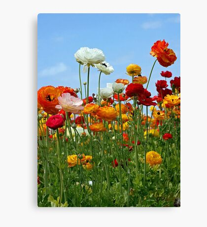 """Spring is Nature's Way of Saying """"Let's Party!"""" Canvas Print"""