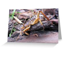 Tree Weta Greeting Card