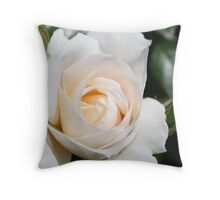 pretty white rose flower photography. Throw Pillow