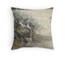 the dessert bush Throw Pillow