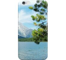 Grand Teton National Park photography iPhone Case/Skin