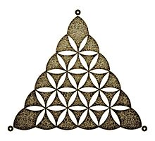 Flower Of Llife, Sacred Geometry, Crop Circle, Triangle Photographic Print
