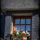 Window Box by Elaine Teague