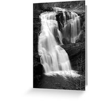Bald River Falls III Greeting Card
