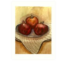 ripe pomegranate  Art Print
