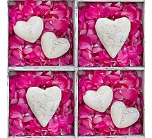 Hearts and Petal Photographic Print