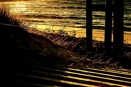 ~Evening Glow~ by a~m .