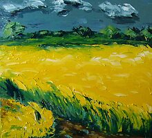 Yellow Canola Field by Claudia Hansen