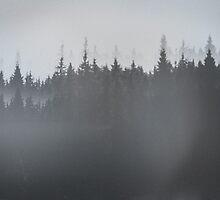 Norway by mrsaraneae
