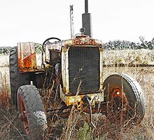 Old Case Tractor by George Petrovsky
