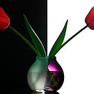 Vase With Tulips by prbimages