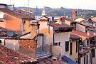Roofs of Verona by Jo Nijenhuis