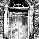 The Door by PaulHealey