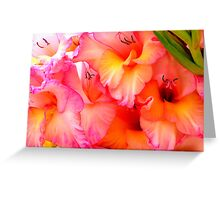 touch me and feel my beauty Greeting Card