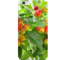 Crab Apples iPhone Case/Skin