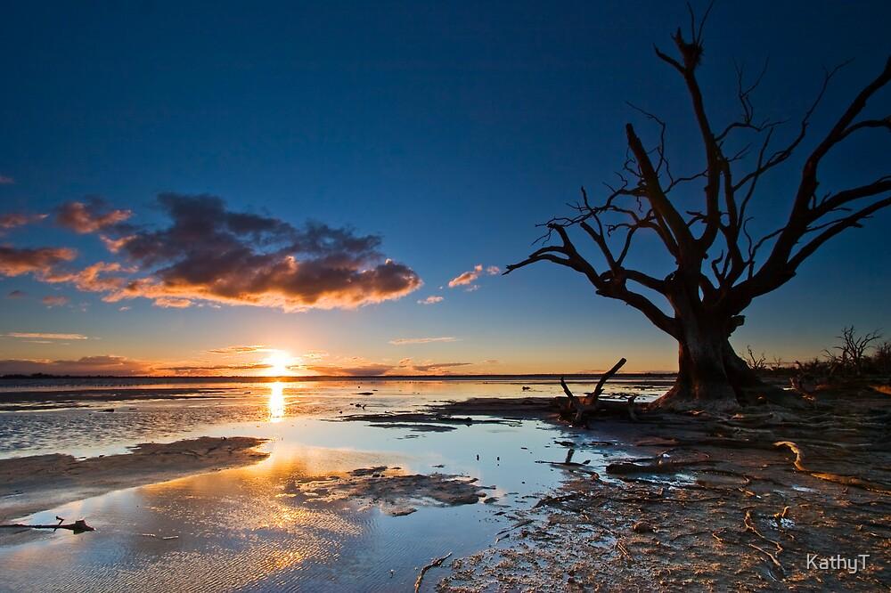 Lake Bonney Sunset by KathyT