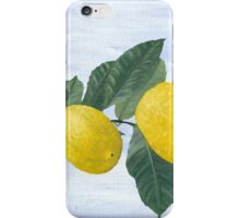 Oil painting of a lemon tree branch with two lemons, isolated on an acrylic painted background iPhone Case/Skin