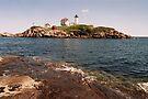 Cape Neddick Maine Lighthouse II by Allen Lucas