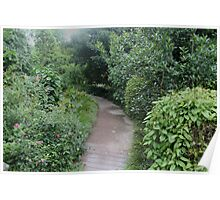 Pathway Through Forest Poster